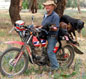 honda farm bikes